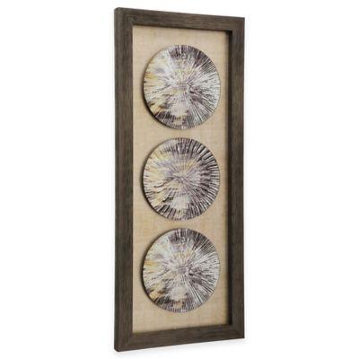 StyleCraft Trio of Weathered Plates Framed Wall Art