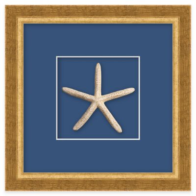 Starfish Shadow Box Wall Art