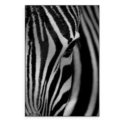 Face of the Zebra 21-Inch x 32-Inch Metal Wall Art
