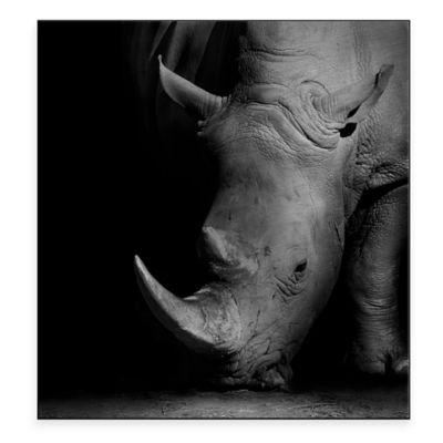 Rhino 30-Inch x 32-Inch Metal Wall Art