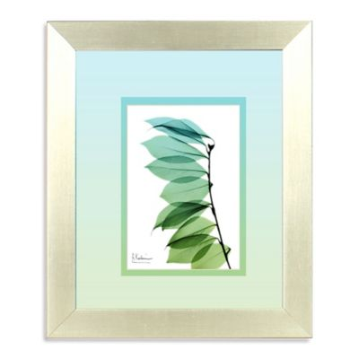 Ombre Xray I Teal Framed Wall Art