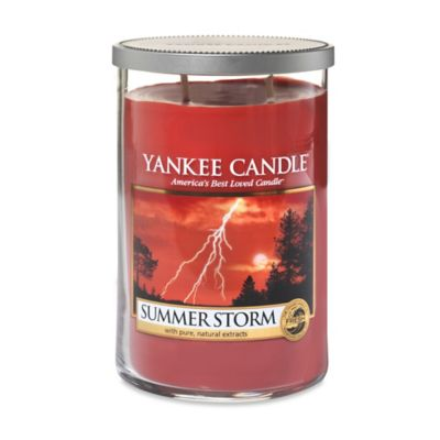 Yankee Candle® Summer Storm 2-Wick Large Tumbler Candle