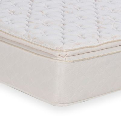 Wolf Solace Pillow Top Twin Mattress