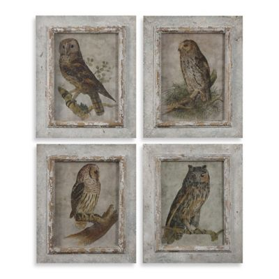 Uttermost Owls Framed Wall Art (Set of 4 Prints)