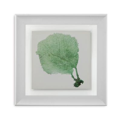 Sea Fan II Framed Wall Art