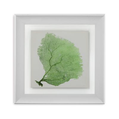 Sea Fan IX Framed Wall Art