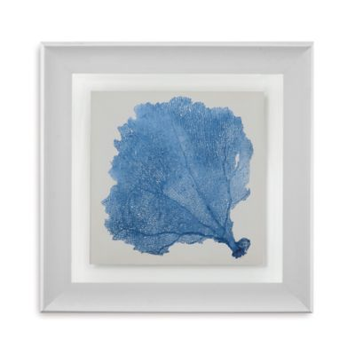 Sea Fan V Framed Wall Art