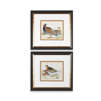 Uttermost Pair of Quail Framed Wall Art (Set of 2)