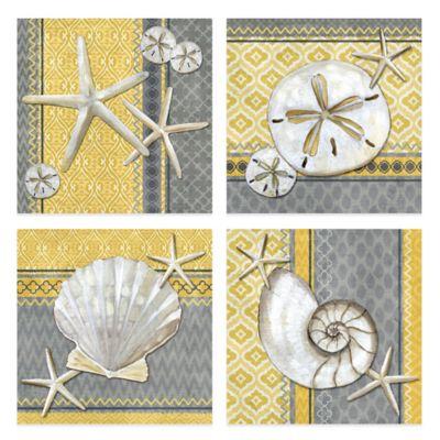 Santa Cruz Shells 12-Inch x 12-Inch Embellished Canvas Wall Art (Set of 4)
