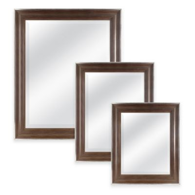 Normandy 29.5-Inch x 41.5-Inch Rectangular Mirror in Chestnut with Silver Accent
