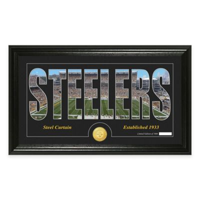 """NFL Pittsburgh Steelers """"Silhouette"""" Bronze Coin Panoramic Photo Mint"""