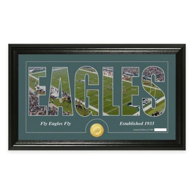"NFL Philadelphia Eagles ""Silhouette"" Bronze Coin Panoramic Photo Mint"