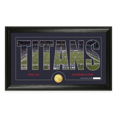"NFL Tennessee Titans ""Silhouette"" Bronze Coin Panoramic Photo Mint"