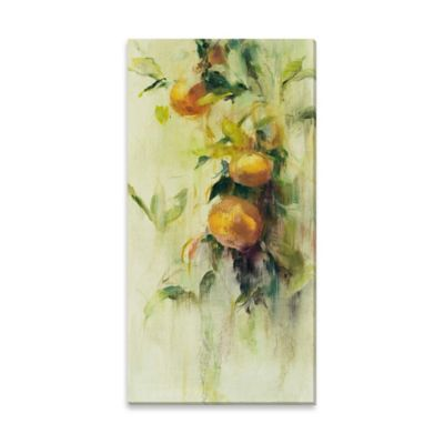 Golden Fruit Study III Canvas Wall Art