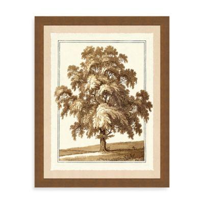 Sepia Tree II Giclée Framed Art Print