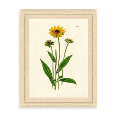 Yellow Flowers Framed Giclée Print Wall Art I