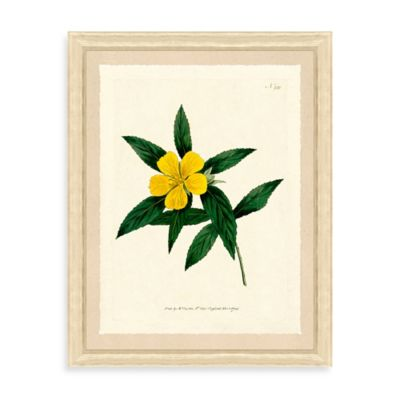 Yellow Flowers Framed Giclée Print Wall Art II