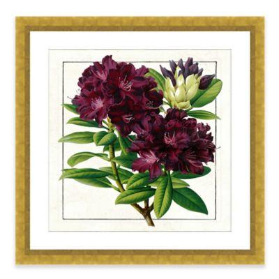 Bold Botanical Framed Giclée Print Wall Art I