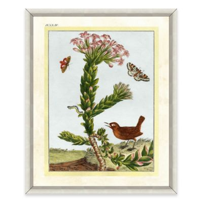Flowers and Bird Framed Giclée Print Wall Art II