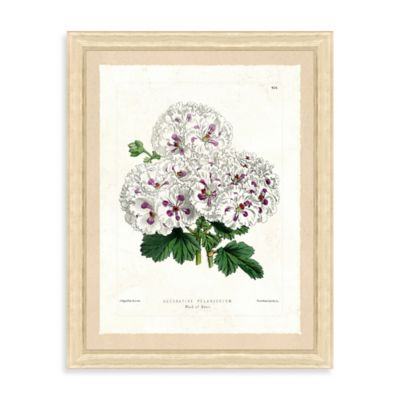 Botanical Bundle Framed Giclée Print Wall Art I
