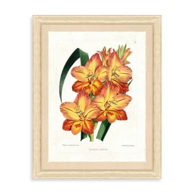 Botanical Bundle Framed Giclée Print Wall Art II