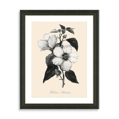 Framed Yellow and White Botanical Giclee Print I Wall Art