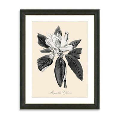 Framed Yellow and White Botanical Giclee Print III Wall Art