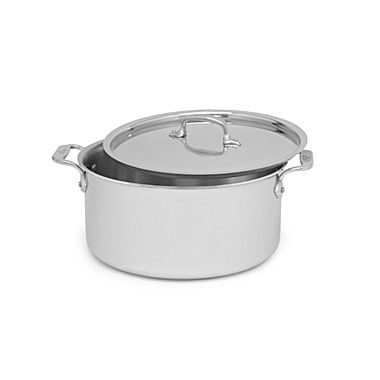 Stainless Steel 8-Quart Covered Stock Pot