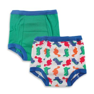 BabyVision® Luvable Friends® 2-Pack Size 2T Water-Resistant Training Pants in Green/Dino