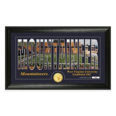 West Virginia University Stadium Minted Coin Panoramic Photo Mint