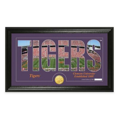 Clemson University Stadium Minted Coin Panoramic Photo Mint