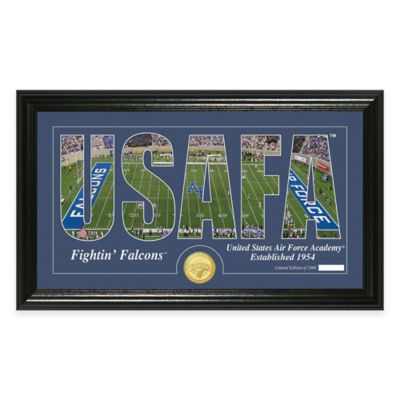 Air Force Stadium Minted Coin Panoramic Photo Mint