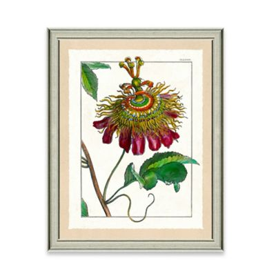Framed Giclee Wild Flower Print Wall Art II