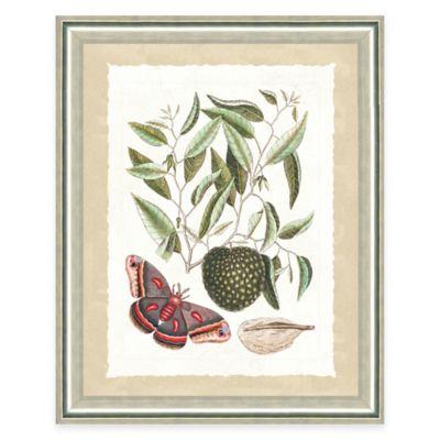 Framed Giclee Butterfly Scene Print Wall Art II