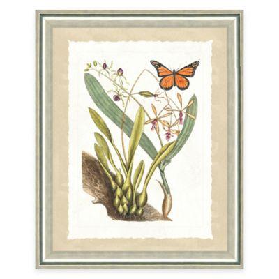 Framed Giclee Butterfly Scene Print Wall Art III