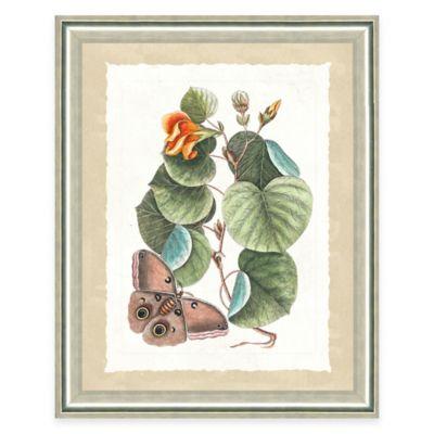 Framed Giclee Butterfly Scene Print Wall Art IV