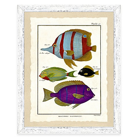 School of fish print i framed wall art www for Closest fishing store
