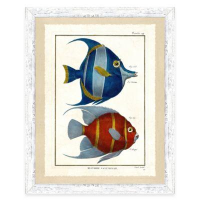 School of Fish Print III Framed Wall Art