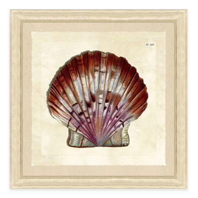 Sea Shell Print V Giclée Framed Wall Art