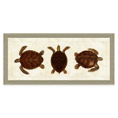 Framed Giclee Turtle Panel Print Wall Art