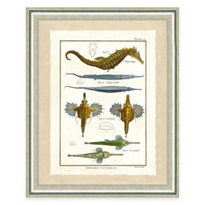 Framed Giclee Seahorse Print Wall Art