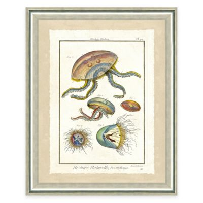 Framed Giclee Jellyfish Print Wall Art