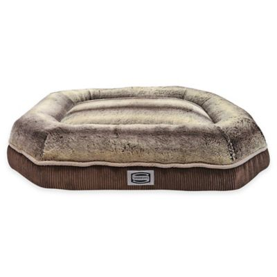 Simmons Comfort Plus Eight Dog Bed in Brown