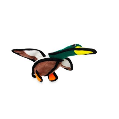 Tuffy® Junior Duck Dog Toy in Green/Brown