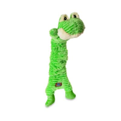Mumbo Jumbos™ Frog Squeaker Dog Toy in Green