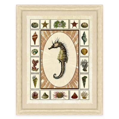 Framed Giclée Seahorse with Shells Print II
