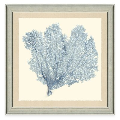 Blue Sea Fan II Framed Art Print
