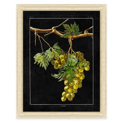 Chalkboard Grape II Sketch Framed Art Print