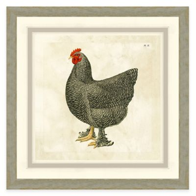 Framed Giclée Chicken I Print Wall Art