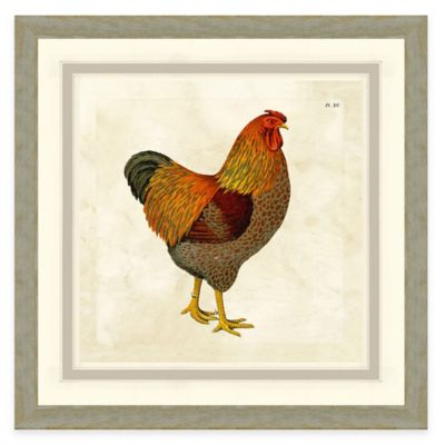 Framed Giclée Chicken II Print Wall Art